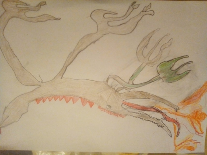 A long lean fire breathing dragon drawing by Hannah Sandford.